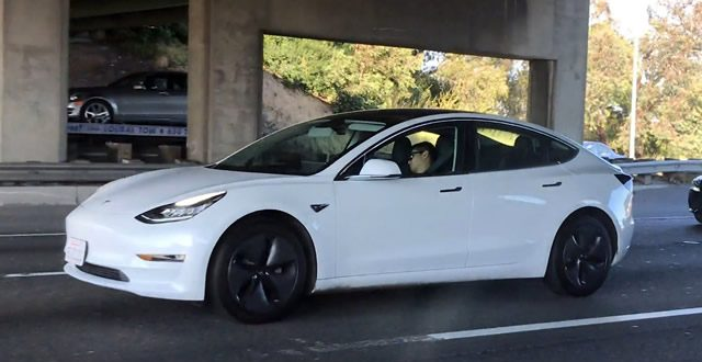 Tesla driver appears to be in deep sleep behind the wheel