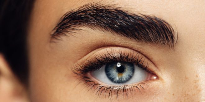 The secret science behind our eyebrow obsession