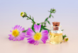 Top Secrets to Discovering the Perfect Fragrance