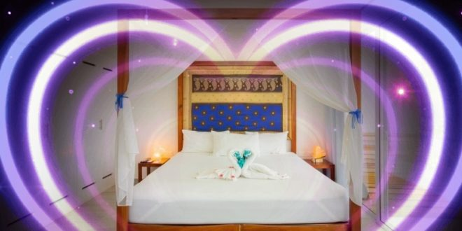 Ocean Zen Suites Is a Sustainable Green Boutique Hotel for a Romantic Getaway in Playa Del Carmen , Mexico