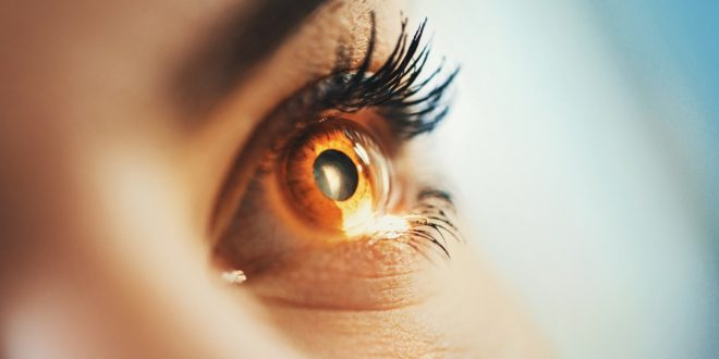 Eye Health – Habits To Keep Healthy Vision