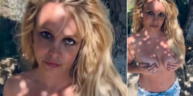 Britney Spears' fourth topless shot stirs fan concern